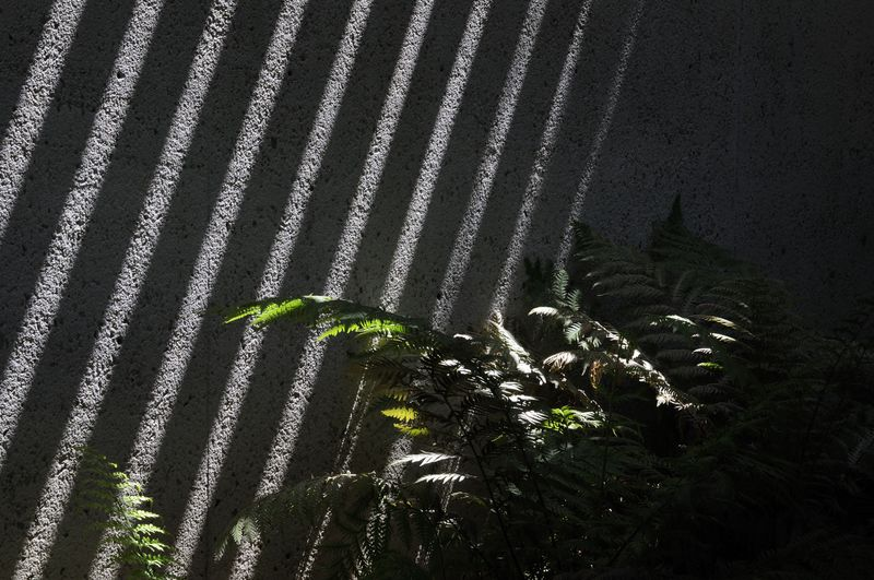 Abstract shadow and light